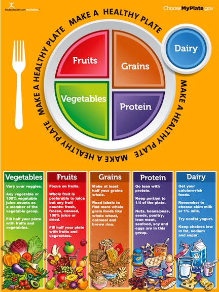 the dash diet and myplate food guide